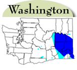 Washington Distribution