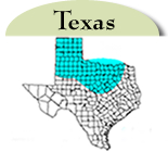 Texas Distribution