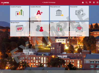 new my WSU Fluid Interface Student Homepage Example