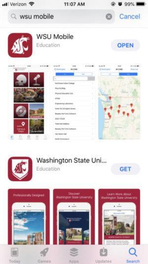 Apple mobile app store