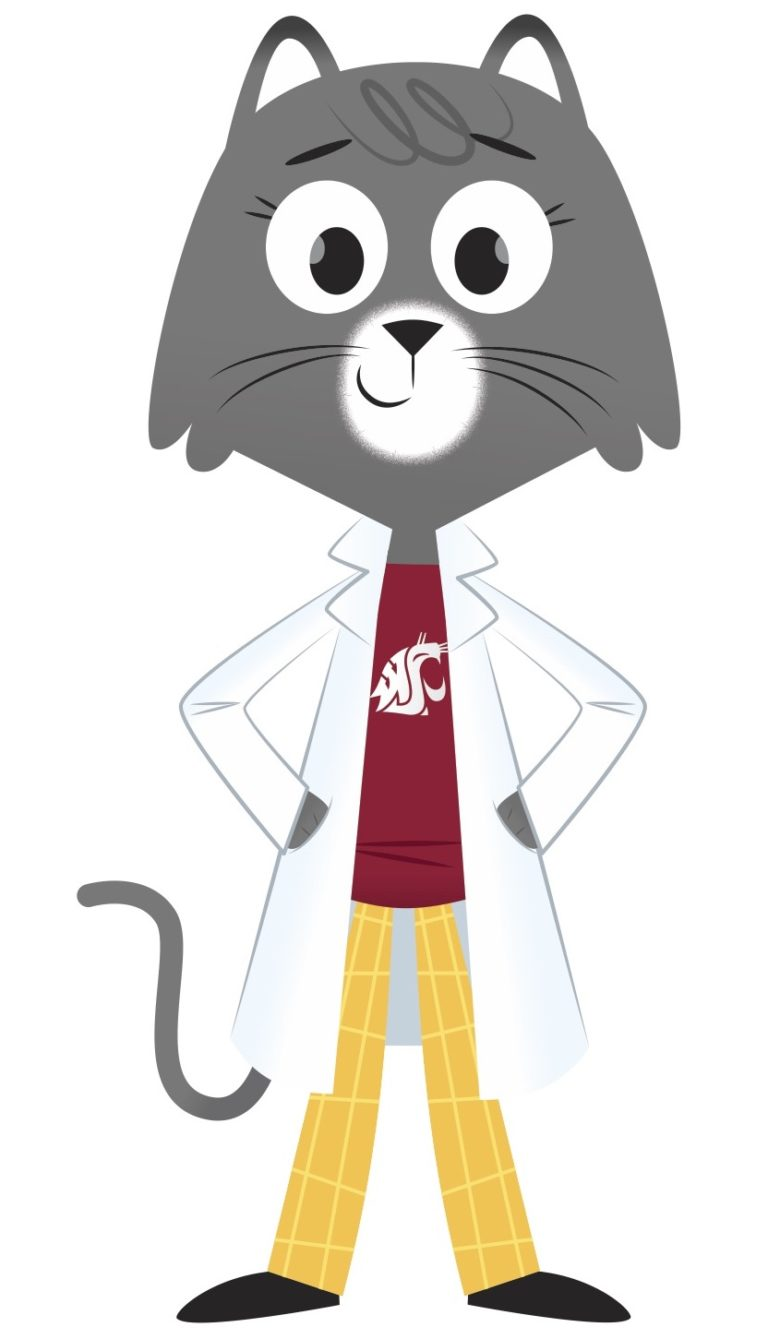 illustrated cartoon gray cat, Dr. Universe, wearing a white lab coat, yellow pants, and a crimson shirt with Washington State University logo