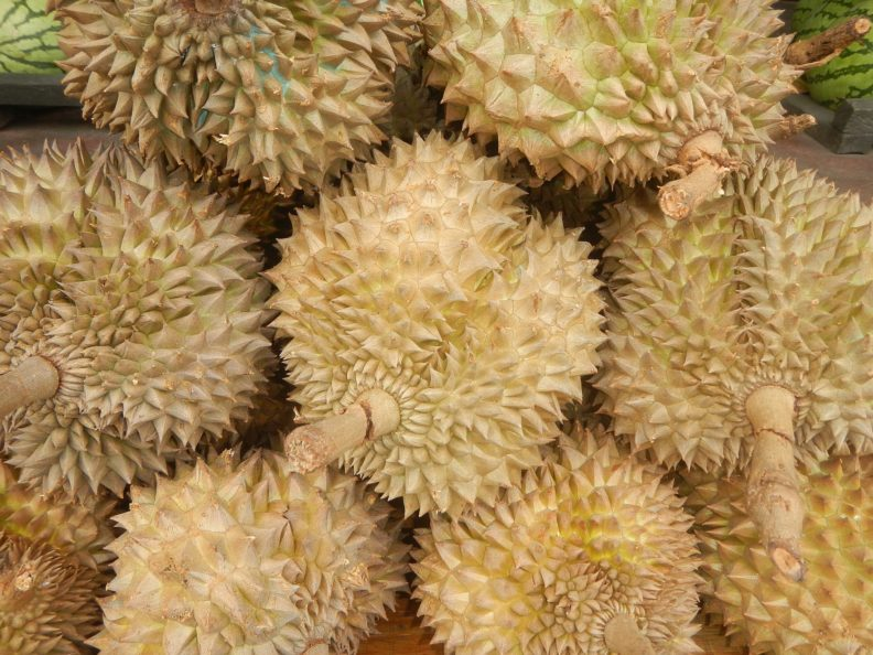 A spiky fruit called durian