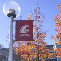 Banner hanging on a streetlight pole