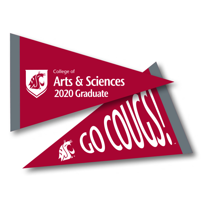 crimson pennant with college of arts and sciences 2020 graduate in white text