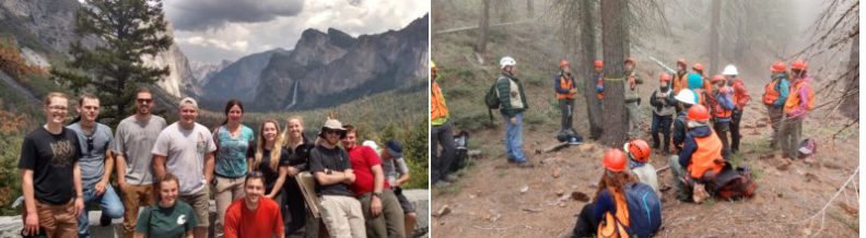 2 photos show a group of researchers smiling in a mountainous setting, the other is a group of researchers wearing hardhats and other gear in a burned out forest setting.