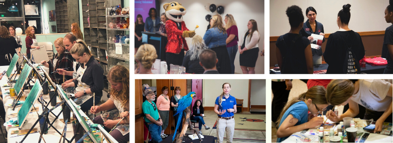 Photo collage: Previous ASWSUG events.