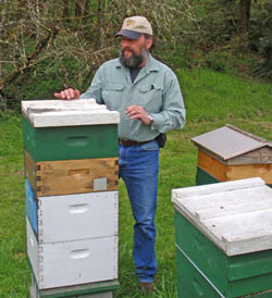 Mark Emrich with honey bee hives.