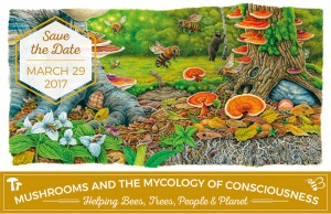Mushrooms & the Mycology of Consciousness