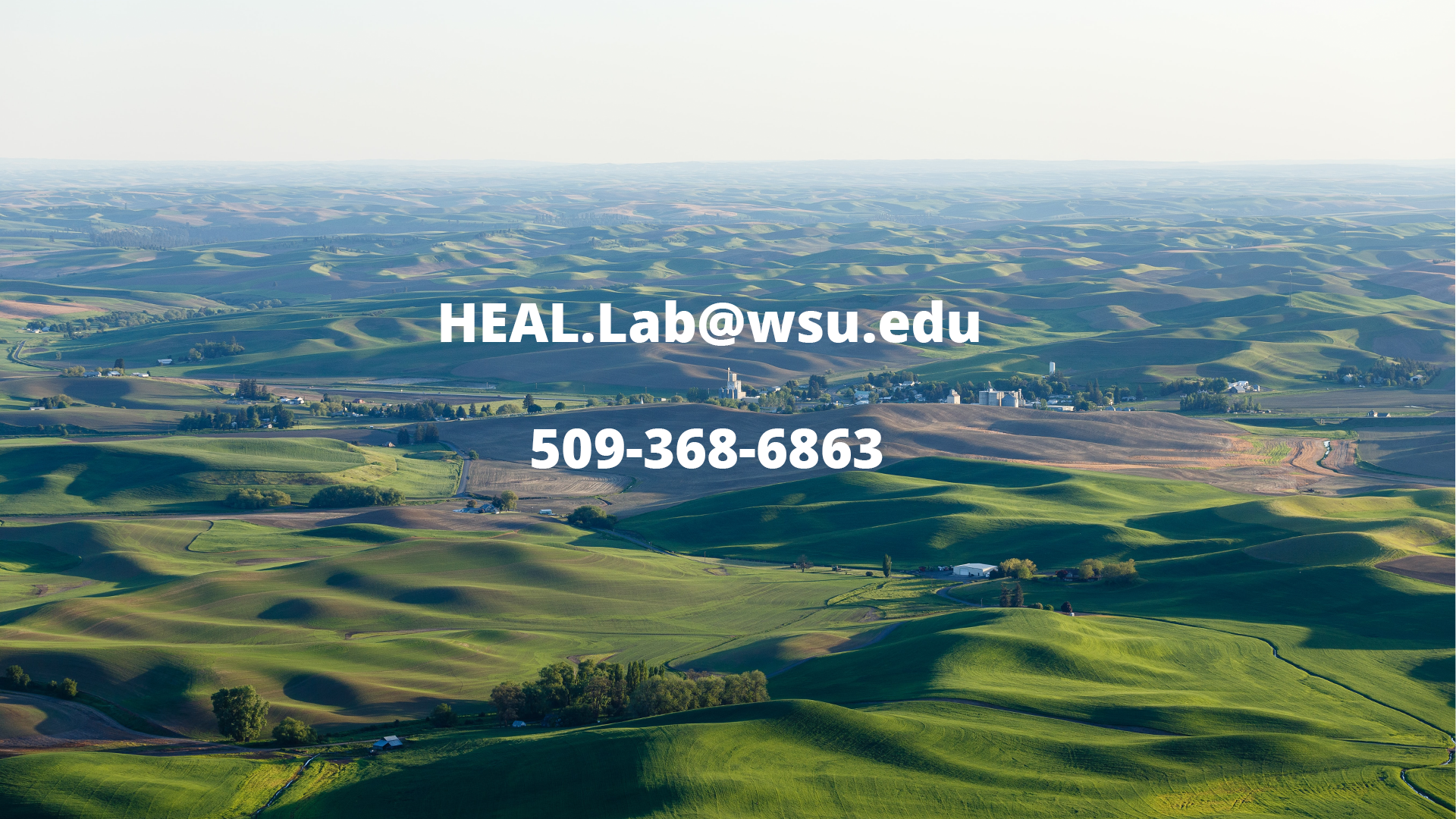 The Palouse with phone and email info