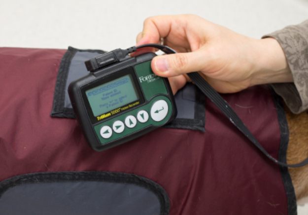 Close up image of Holter monitor as it is being set up to record data.