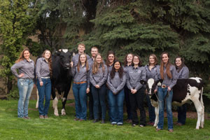 Group Photo of thriteen Cooperative University Dairy Students with cow and calf