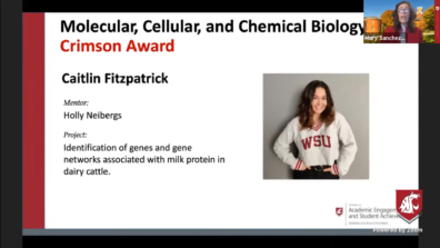 PowerPoint SURCA award for Caitlin Fitzpatrick