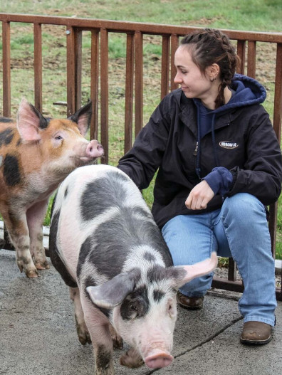 Student with pigs