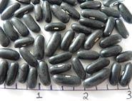 Major dry beans