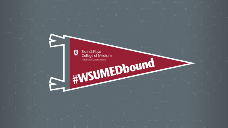 Wallpaper PC Tablet Crimson WSUMEbound banner on a gray background
