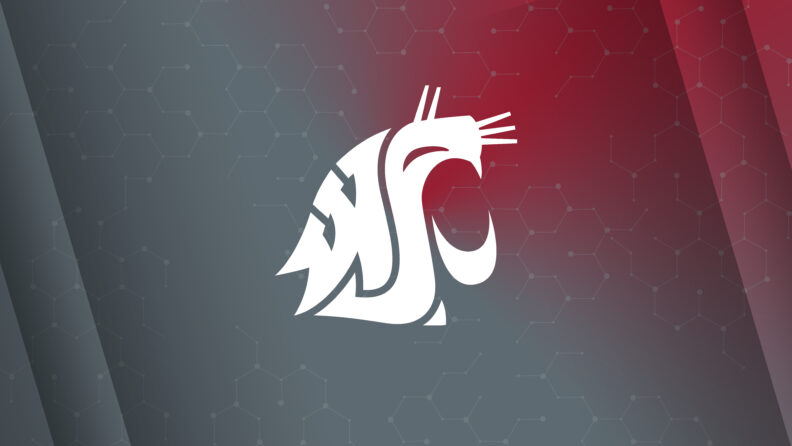 Wallpaper PC Tablet Crimson Cougar logo on a gradient background from crimson to gray