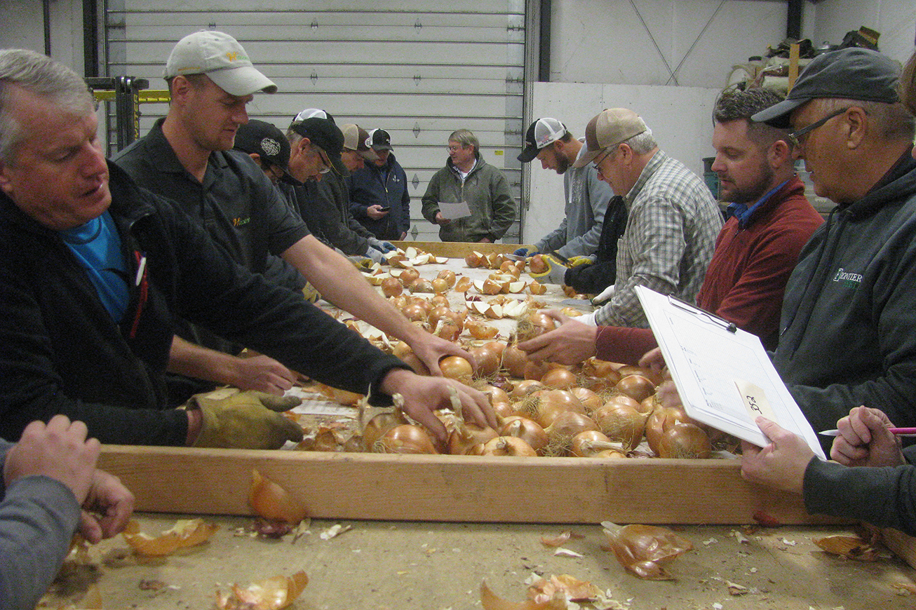 Researchers surround a long table examining onions.