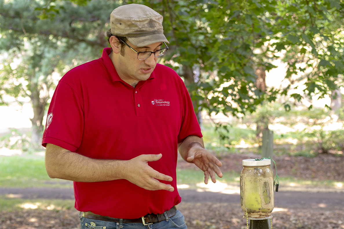 Josh Milnes inspects a brown marmorated stink bug trap.