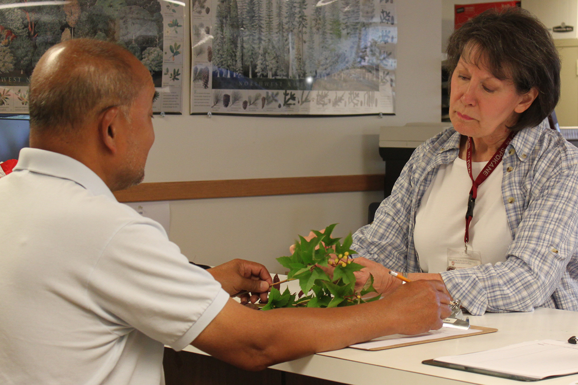 A gardner with a plant talking to a volunteer.