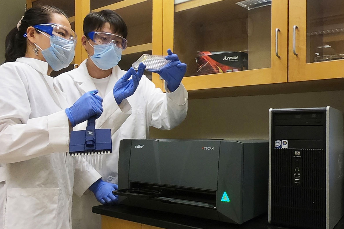 Two PhD students work in a laboratory.