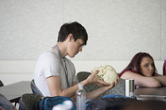 A male student looks at a human skull.