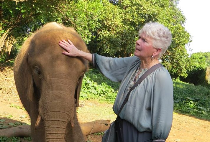 Dr. Anita Hunter pets an elephant at an animal sanctuary in Uganda.