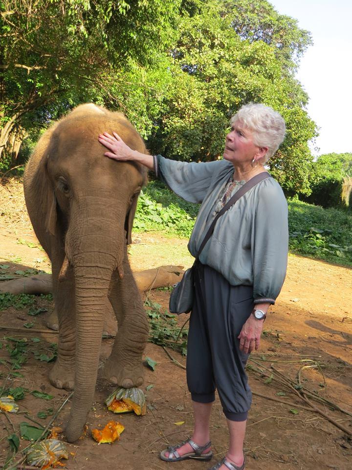 Dr. Anita Hunter pets an elephant at an animal sanctuary in Uganda.