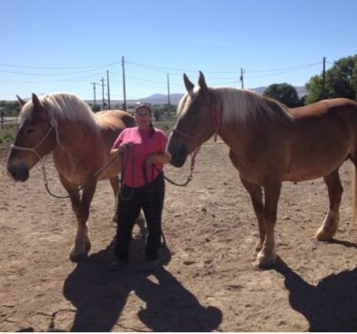 Jayne Beebe standing with two Belgian Draft horses.
