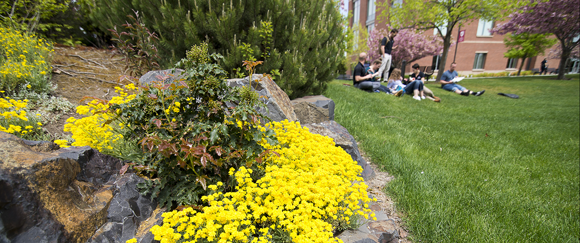 Spring on Spokane Campus