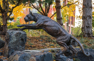 photo of statue of cougar on WSU Health Sciences campus