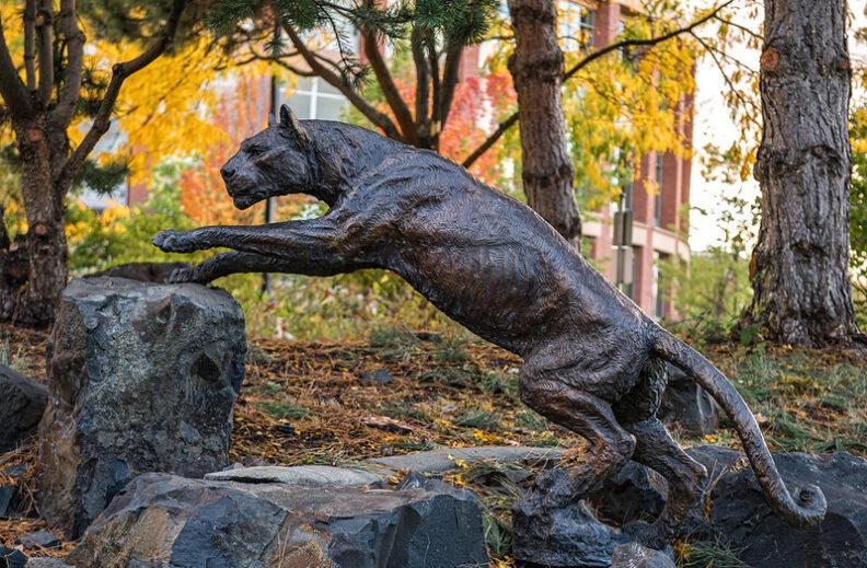 photo of statue of cougar on WSU Health Sciences campus