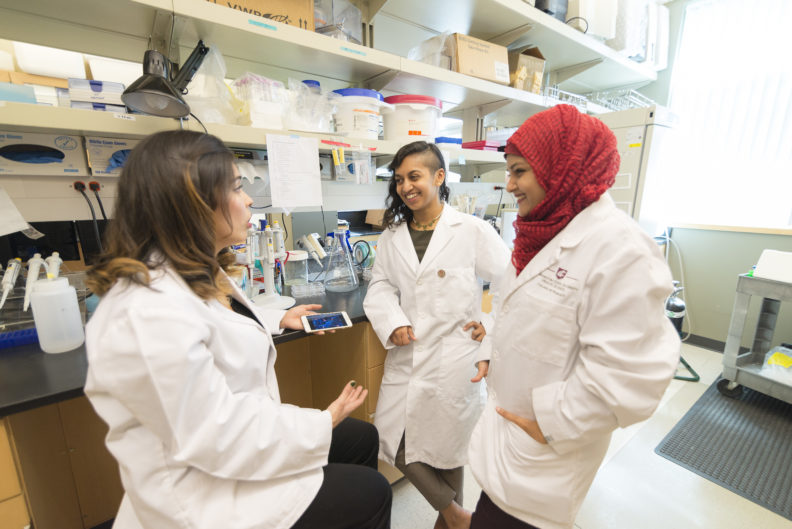 Graduate students working together in the lab.