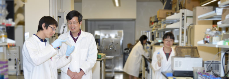 Professor Zhu working in his research lab