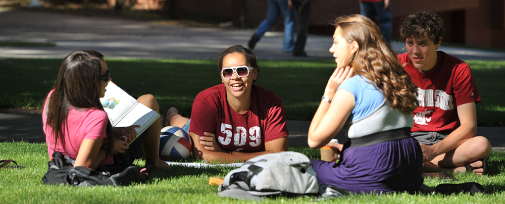 four students lounge on shady green grass, studying and talking