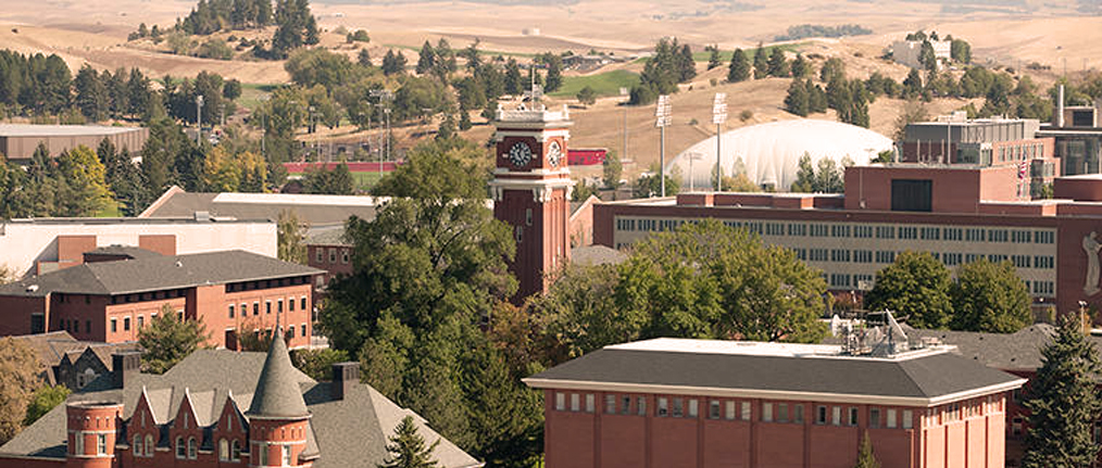 view of Pullman campus centered on clock tower