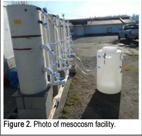 Mesocosm Facility