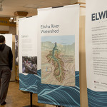 WSU Anthropology Museum display - Elwha
