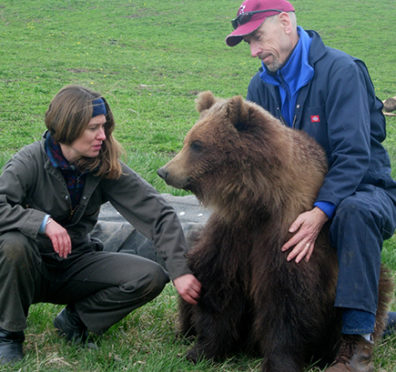 Robbins, right, and Lynne Nelson, assistant director of the bear center, work with one of two grown, bottle-raised grizzlies, born in 2003.