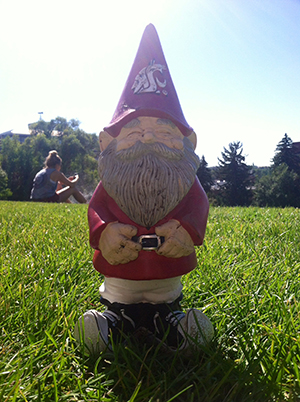 Tomás the Gnome