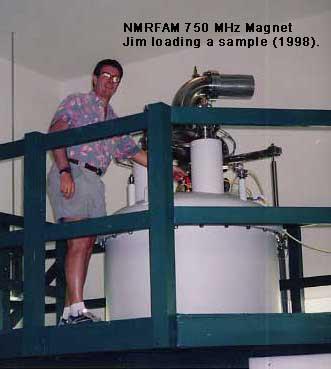 Satterlee at work in his laboratory in 1998.