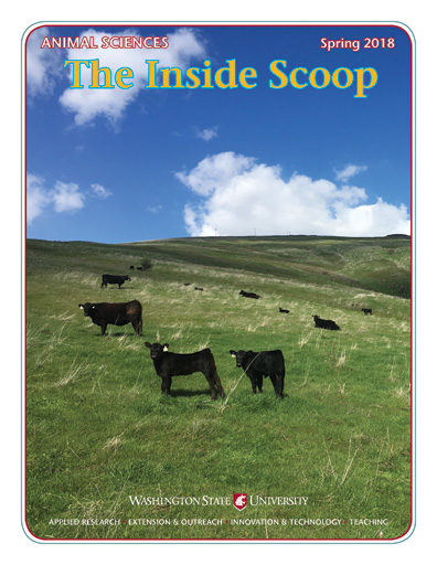 The Inside Scoop Spring 2018 (pdf)