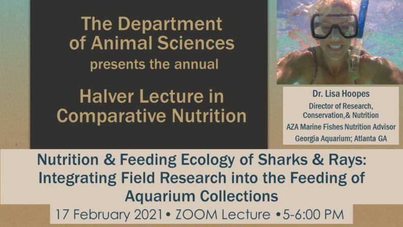 Halver Lecture 2021