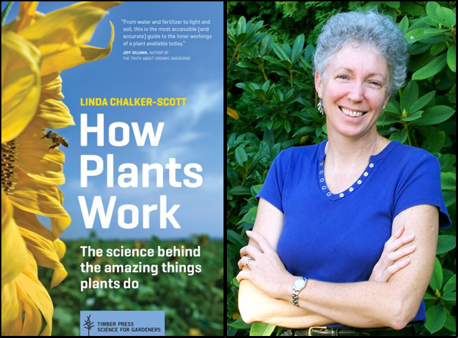 Linda Chalker-Scott and her book, How Plants Work.