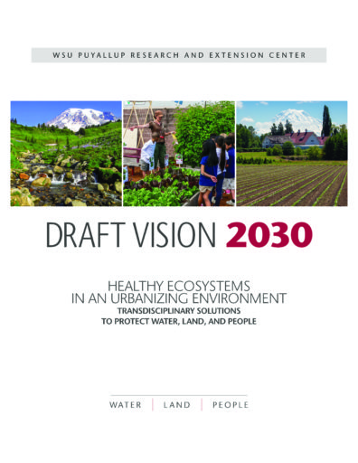 Draft Vision 2030 (PDF)