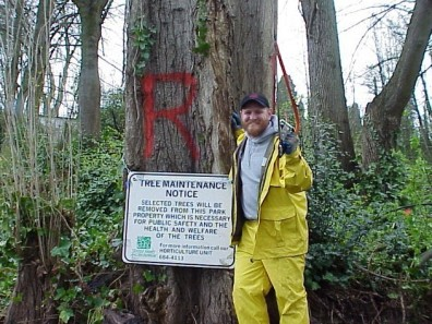 Hazardous trees marked for removal.