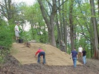 Placing jute along the steepest part of the slope to help hold soil in place.