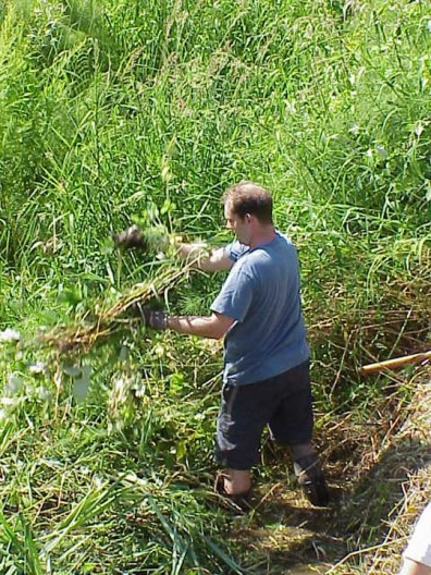 Pulling weeds from the stream.