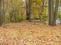 The site in fall 2002.