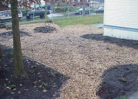 The freshly mulched and completed site.