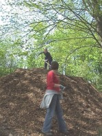 Loading mulch for a trip down the slope.